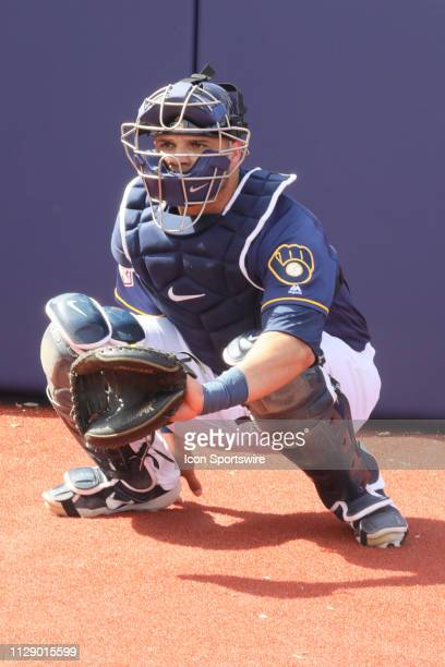 Brewers catcher Manny Pina warms up before a spring training game between the Arizona Diamondbacks and Milwaukee Brewers on March 6 at American...