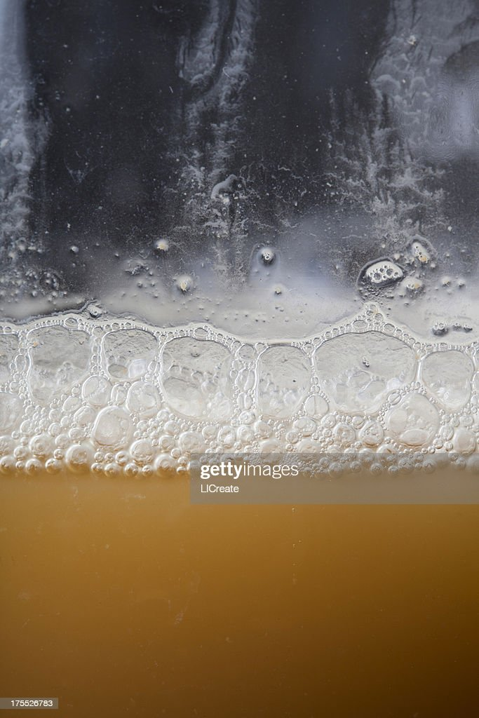 Brewing Yeast Starter : Stock Photo