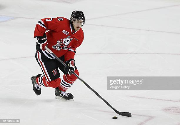 Brian Brosnan of the Niagara Ice Dogs skates during an OHL game between the Belleville Bulls and the Niagara Ice Dogs at the Meridian Centre on...