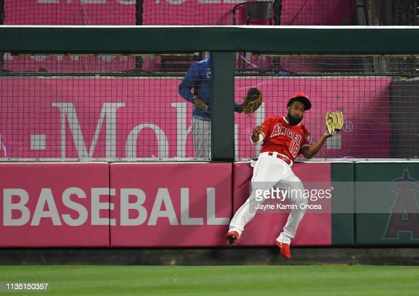 Brian Goodwin of the Los Angeles Angels of Anaheim crashes into the fence after catching a ball hit by Ronald Guzman of the Texas Rangers in the...