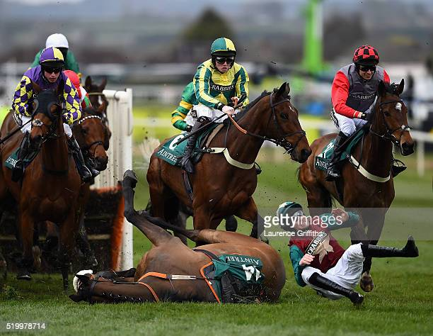 Brian Hughes is unseated from Urban Hymn in The Gaskells Waste Management Handicap Hurdle Race during the 2016 Crabbie's Grand National Steeple Chase...