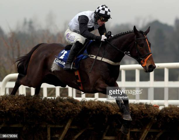 Brian O' Connell and Dunguib clear the last flight before landing The Deloitte Novice Hurdle Race run at Leopardstown Racecourse on February 7 2010...