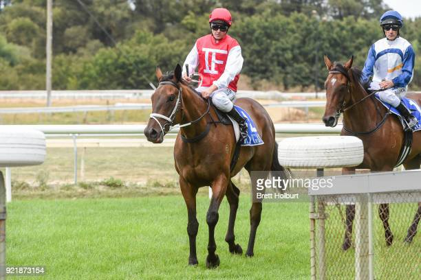 Brian Park returns to the mounting yard on Borrow after winning the Iron Jack FM Maiden Plate at Kyneton Racecourse on February 21 2018 in Kyneton...