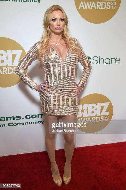 Briana Banks attends the 2018 XBIZ Awards on January 18 2018 in Los Angeles California