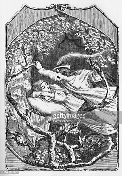 Briar Rose 1901 The Briar Rose is the basis of Sleeping Beauty by Charles Perrault From Grimms Household Stories collected by the Brothers Grimm...