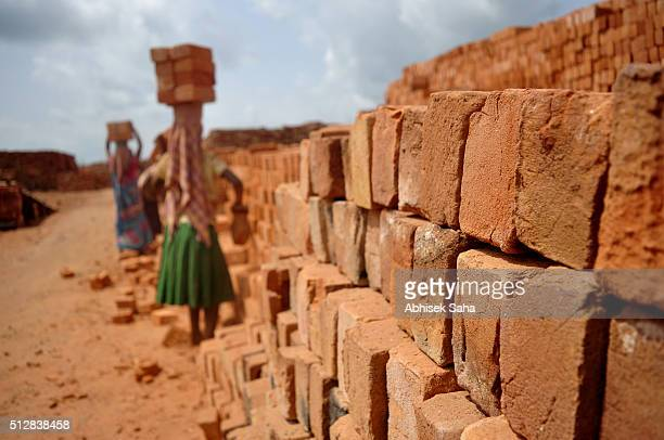 brick field workers - northeast india stock photos and pictures