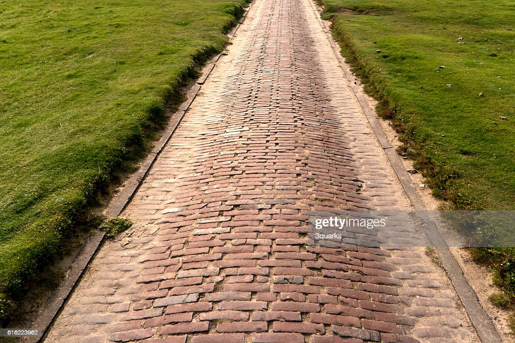 Brick Path in Westerhever in Germany : Stock Photo