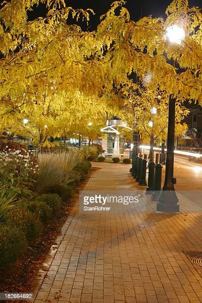 Brick Sidewalk At Night, Dayton, Ohio