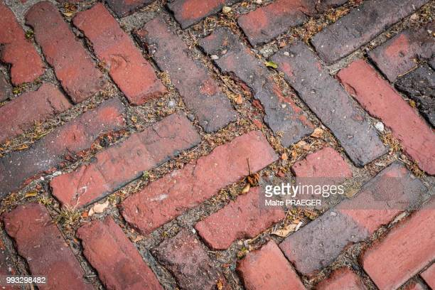 brick stone sidewalk - screen saver stock photos and pictures