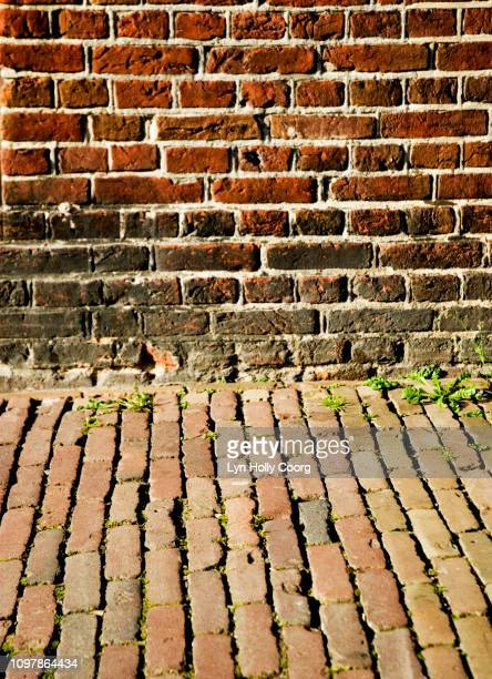brick wall and cobbles - lyn holly coorg stock photos and pictures