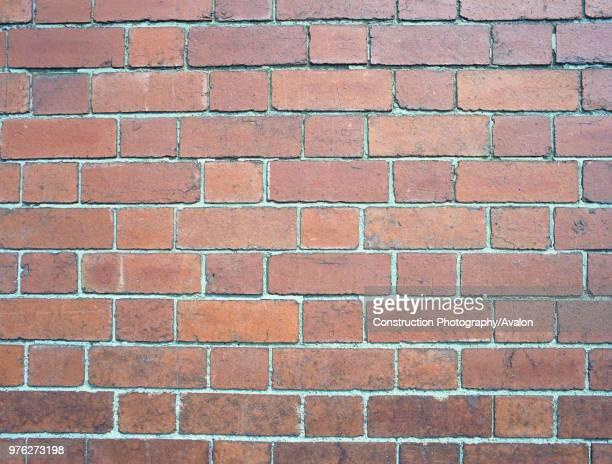 Brick wall, detail.