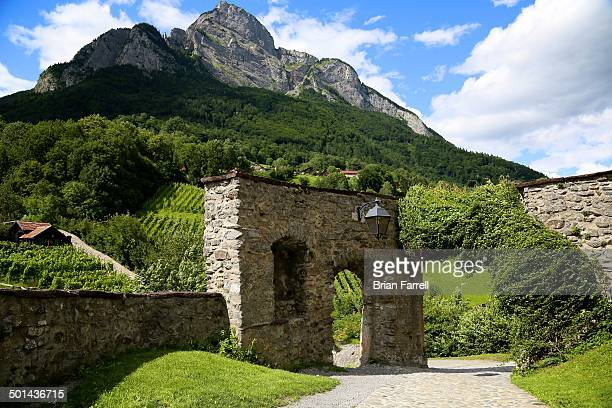 CONTENT] A brick wall gate sits in front of vineyards cut into the side of a Swiss mountain