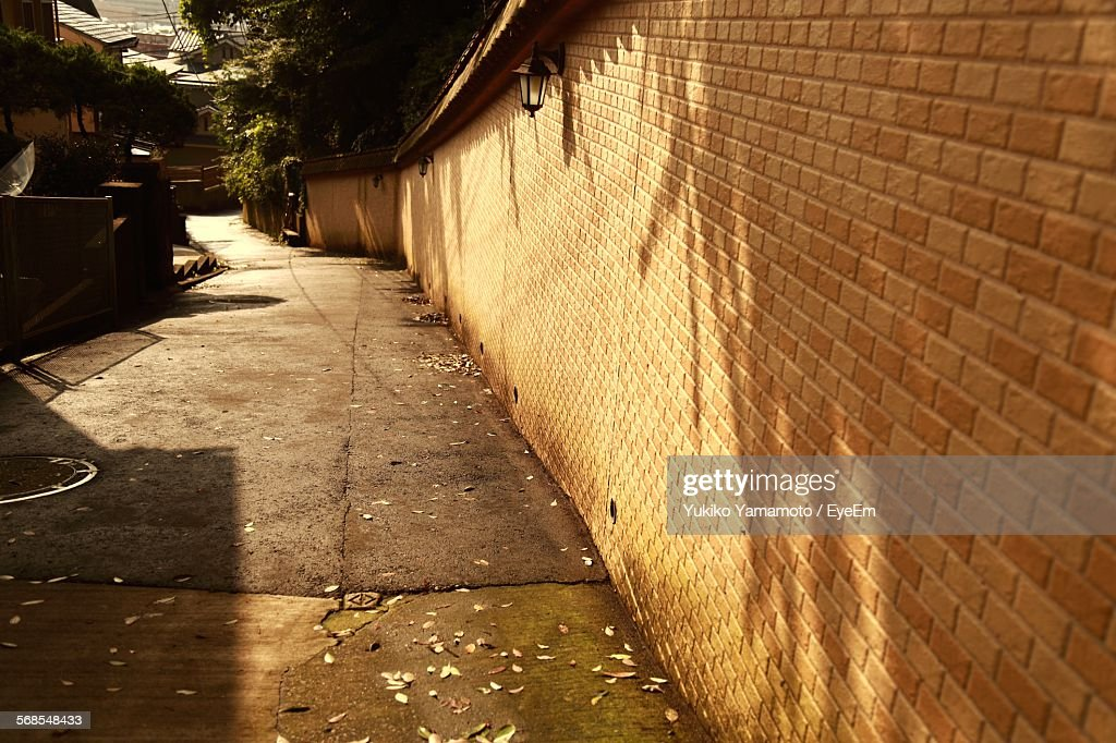 Brick Wall In Residential Alley : Stock Photo