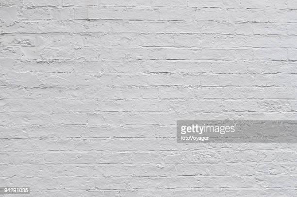 Brick wall whitewashed