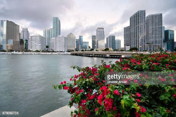 Brickell Avenue Bridge, Miami, Florida