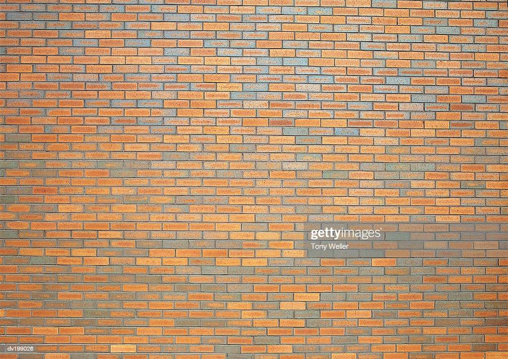 Brickwall : Stock Photo