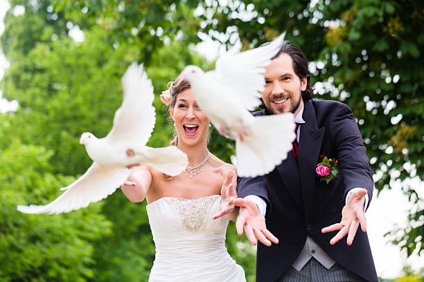 Free wedding dove images pictures and royalty free stock photos bridal pair with flying white doves at wedding junglespirit Choice Image