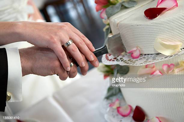 Bride and groom cut their wedding cake together