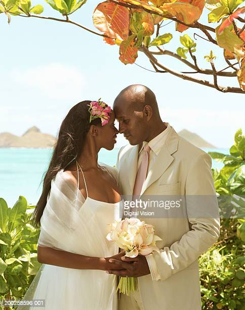 bride and groom embracing under tree by ocean - kailua stock pictures, royalty-free photos & images