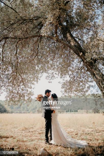 bride and groom - bridegroom stock pictures, royalty-free photos & images
