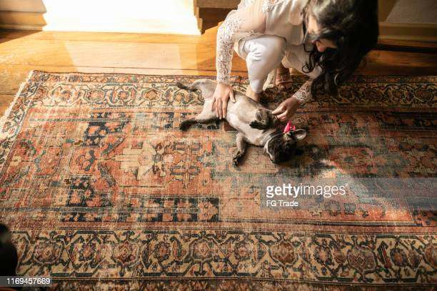 bride crouching and petting a cute dog - rug stock pictures, royalty-free photos & images