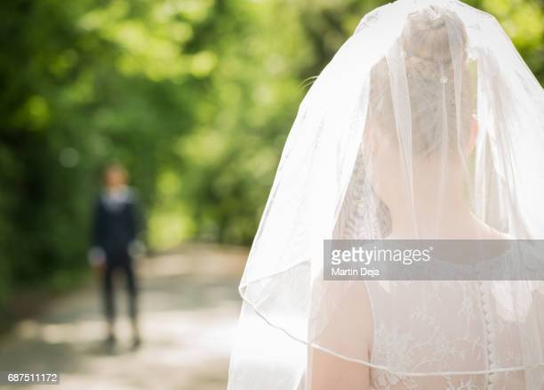bride from behind - wedding veil stock photos and pictures