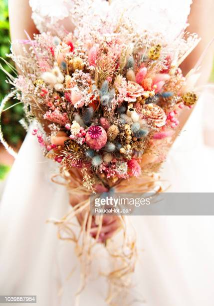 bride holding her bouquet - dried plant stock pictures, royalty-free photos & images