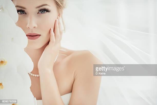 novia - velo fotografías e imágenes de stock