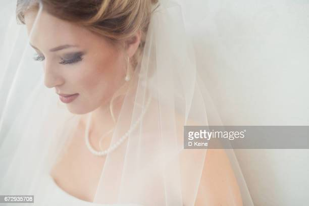 bride - veil stock photos and pictures