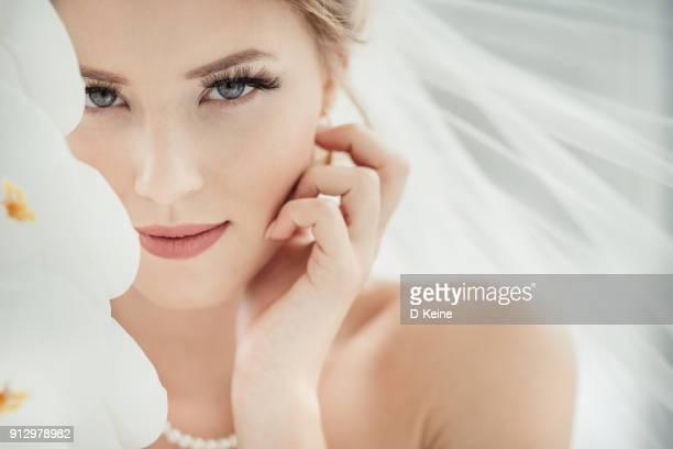 bride - sposa foto e immagini stock
