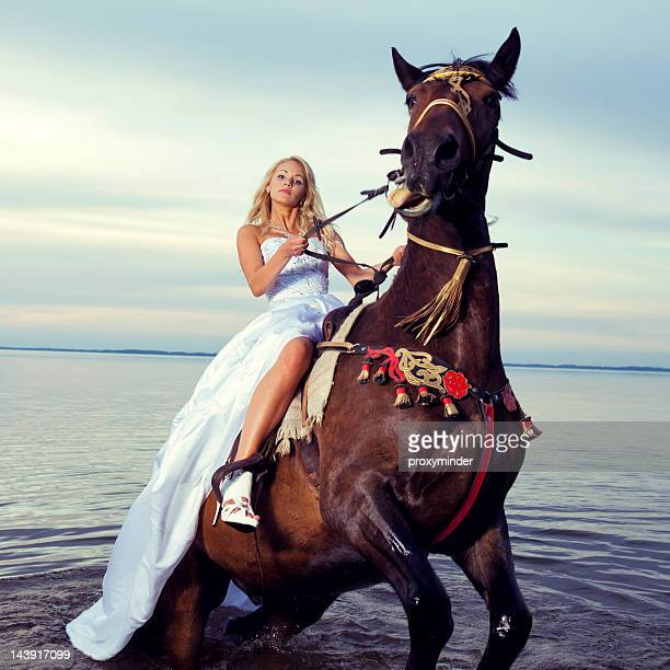 bride riding a horse - royalty free images no watermark stock photos and pictures