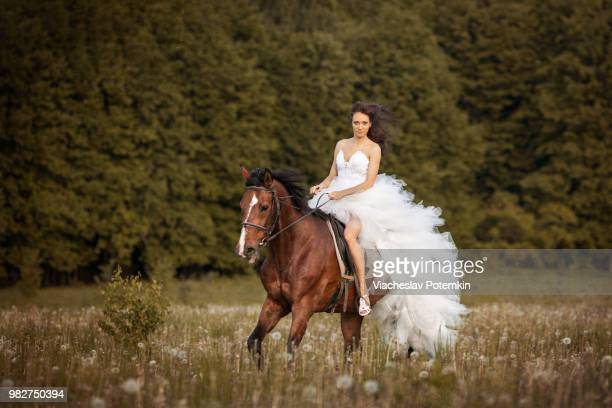 bride riding on horse in wedding dress - runaway stock pictures, royalty-free photos & images