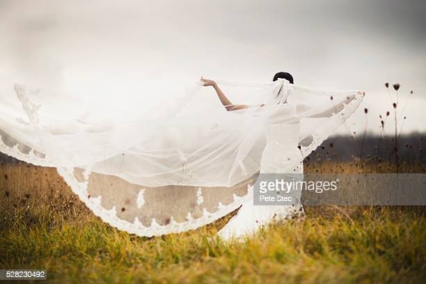 a bride standing in a field and holding out her veil in the wind - veil stock photos and pictures