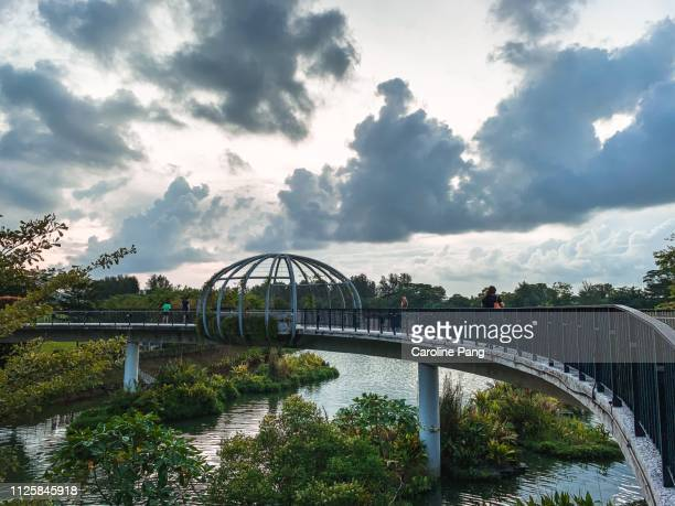 Bridge above lake