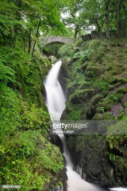 Bridge, Aira Force waterfall, Lake District National Park, Cumbria, England, United Kingdom