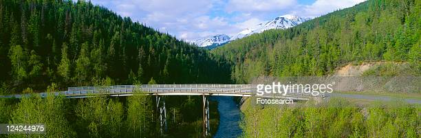 Bridge along Seward Highway