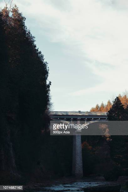 bridge among trees, canada - image stock pictures, royalty-free photos & images