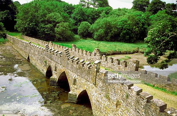 bridge at ardmore abbey, county waterford, ireland - county waterford ireland stock pictures, royalty-free photos & images