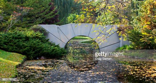bridge at dow gardens - midland michigan - midland michigan stock pictures, royalty-free photos & images