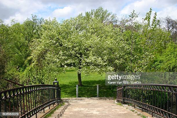 bridge by trees growing on field against sky - trenton bridge stock photos and pictures