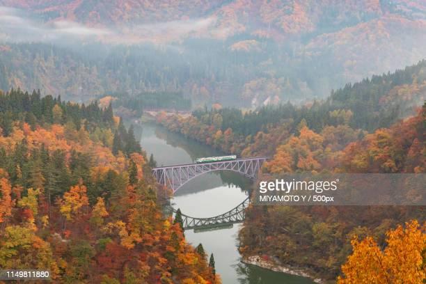 bridge in autumn - miyamoto y ストックフォトと画像