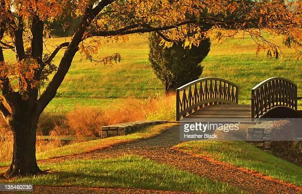 bridge in autumn - kansas city missouri fotografías e imágenes de stock