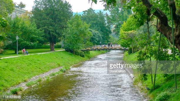 bridge in wunderschöne parkanlage mitten im herzen von baden-baden,germany - baden baden stock-fotos und bilder