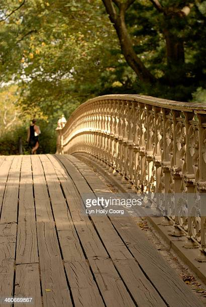 bridge in central park with woman in foreground - lyn holly coorg photos et images de collection