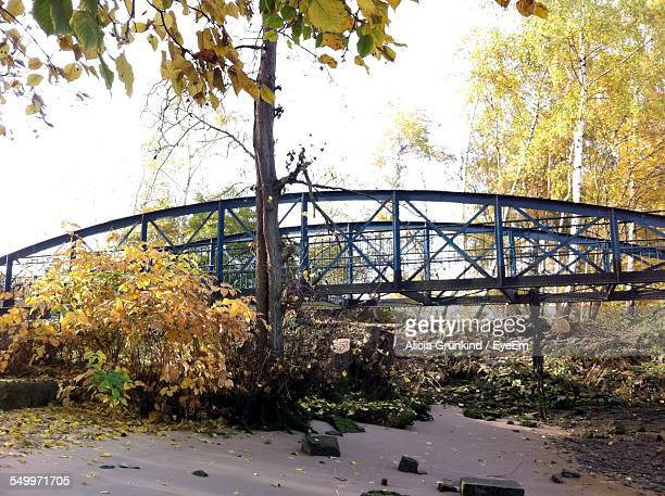 Bridge In Park During Autumn