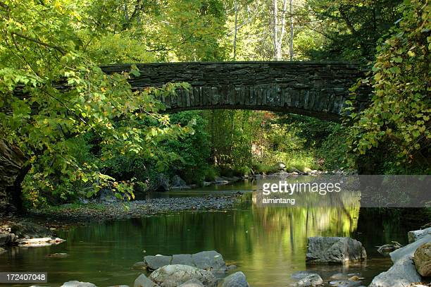 bridge in robert treman state park - finger lakes stock pictures, royalty-free photos & images
