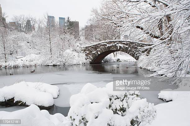 Bridge in snowy urban park