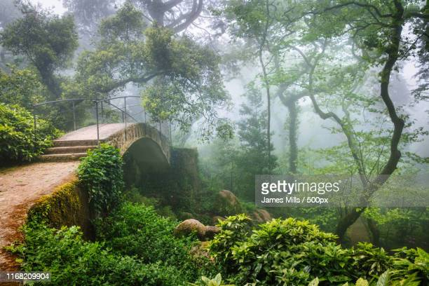 bridge of dreams - sintra fotografías e imágenes de stock