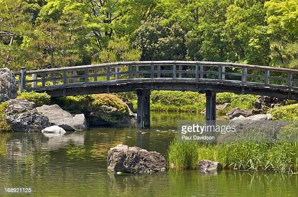 Bridge of the Camphor Tree