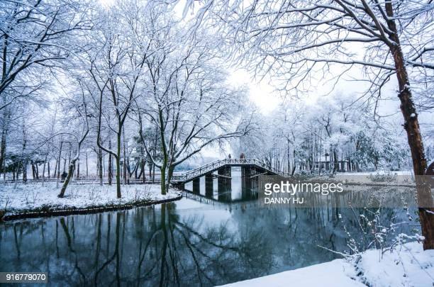 bridge of the park in west lake in winter after snow, hangzhou - hangzhou stock pictures, royalty-free photos & images
